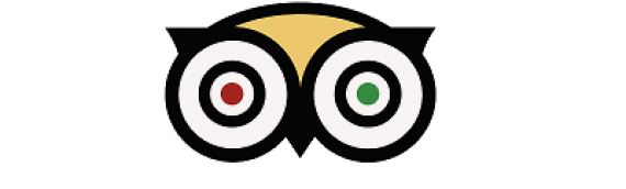 Why is TripAdvisor important for your business?