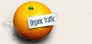 Organic traffic increase
